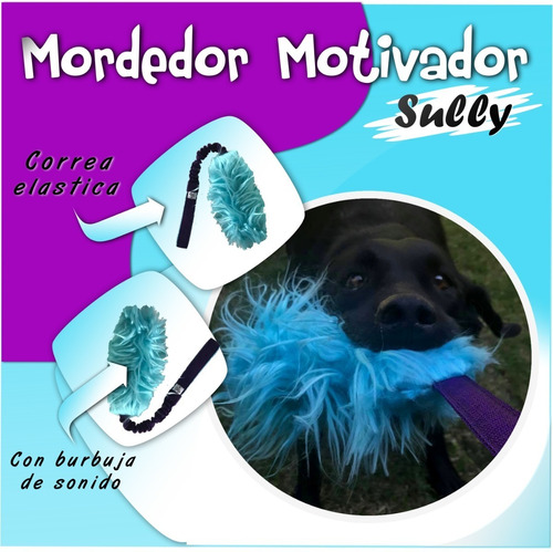 mordedor motivador / para perros