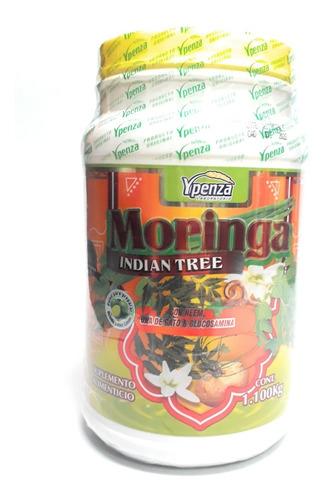moringa indian tree ypenza 1.100 kg envio full