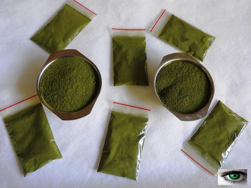 moringa oleífera - orgânica, sachês de pó de folhas10 gramas