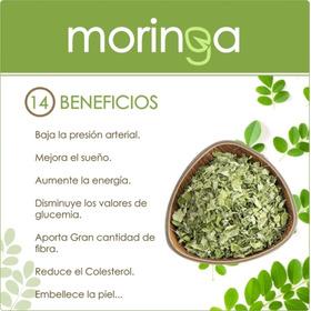 Moringa Planta Medicinal 40 Gr - - Unidad a $15990