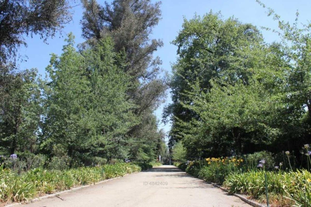 mostazal, espectacular casa y parque.