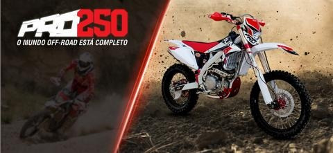 moto cross pro 250 cc fun motors 2019
