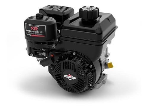 motor briggs & stratton 10 hp xr professional envio gratis