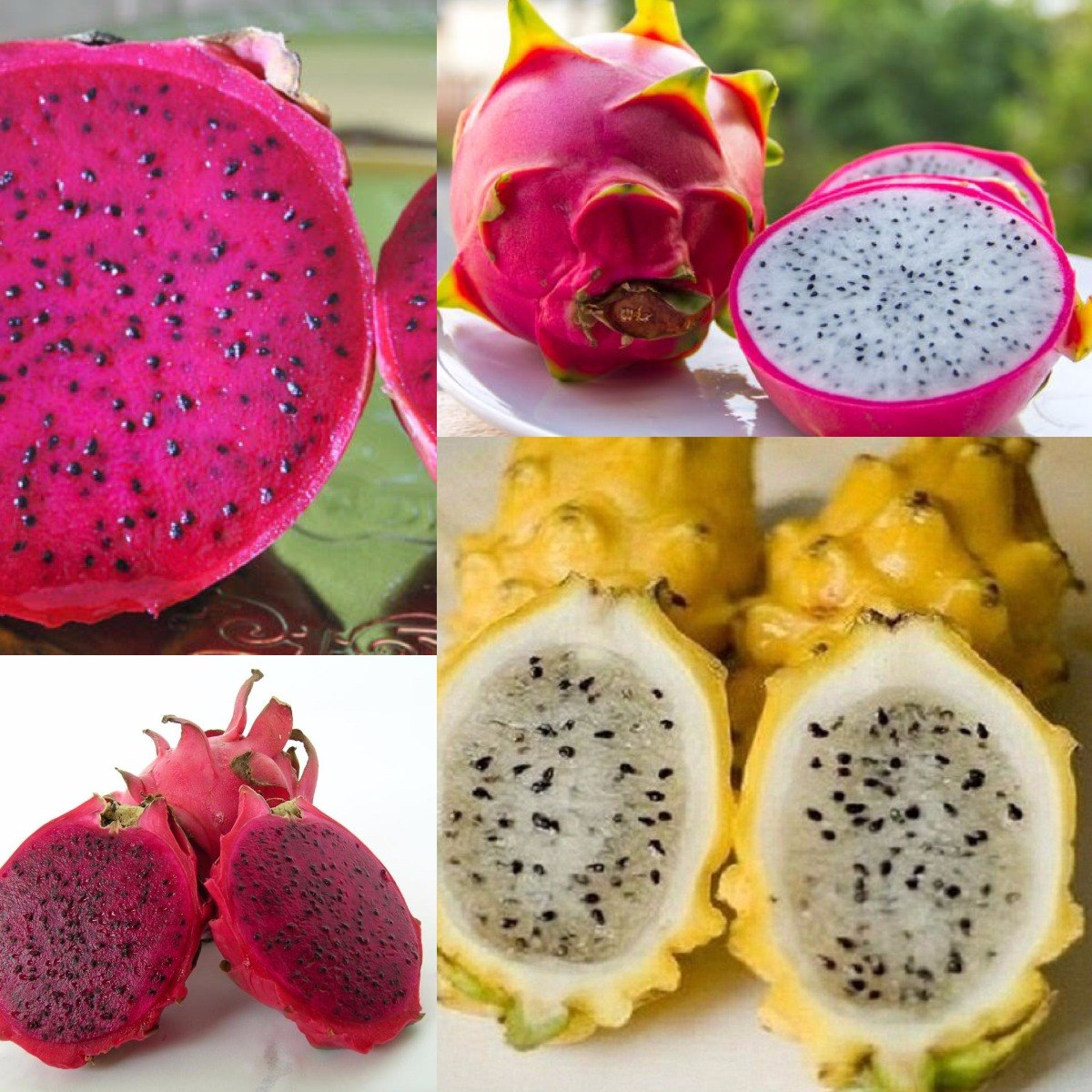 c082d8755cae3 Pitaya Fruta