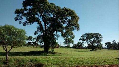 mude de vida saia do aluguel terrenos promoção- cristopher