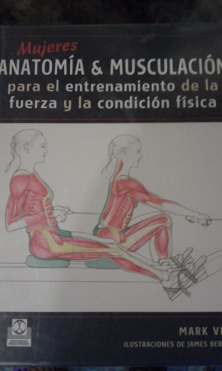 Atractivo Entrenamiento De Fuerza Anatomía Inspiración - Imágenes de ...