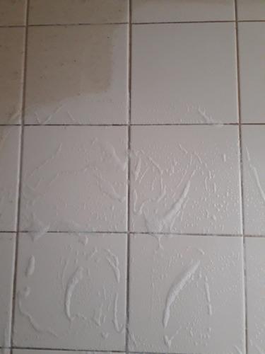 multiservicios  de limpieza a domicilio