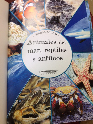 mundo animal. reptiles, aves insectos y acuáticos.