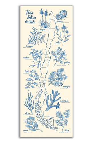 mural decorativo mapa flora nativa azul - lámina mappin