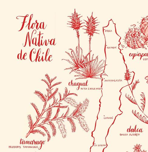 mural decorativo mapa flora nativa rojo - lámina mappin