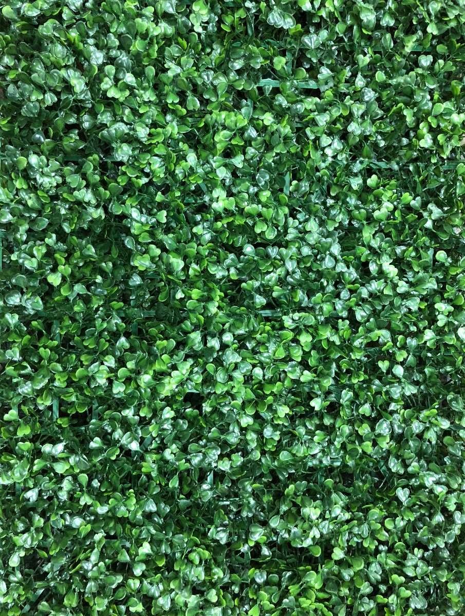Muro jardin great el jardn de doble muro con una coleccin de hierbas jardn botnico nacional de - Muro jardin ...