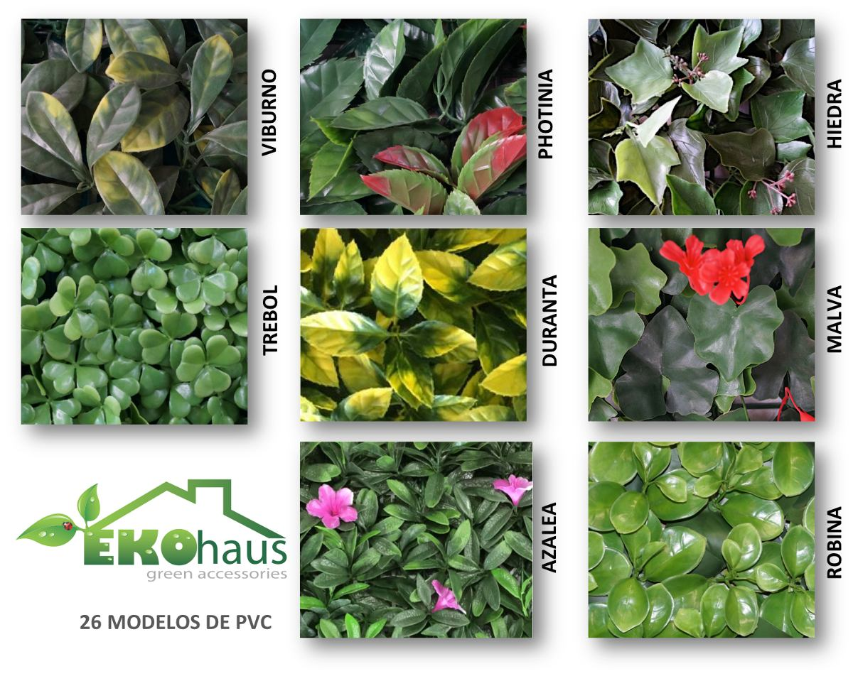 Muro verde arbustos setos plantas para exterior 178 for Plantas para muros verdes verticales