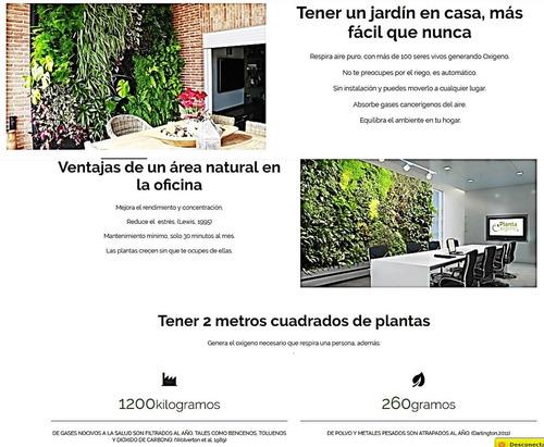 muro verde natural de 2x1m con 10% descuento