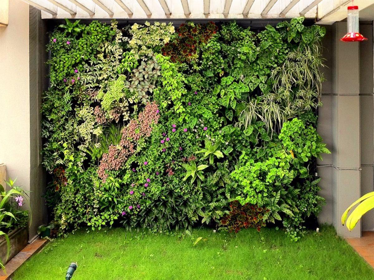 Muro verde o techo verde modular panel de 60 x 40 cms for Plantas para muros verdes verticales