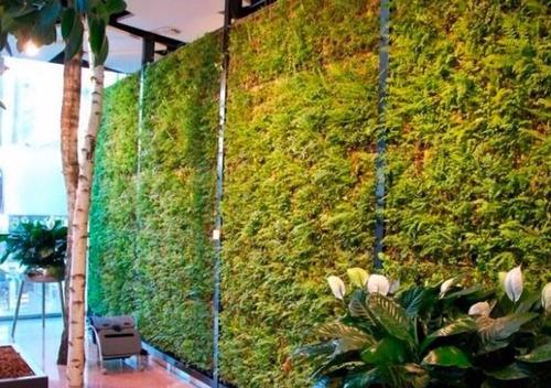 muro verde o techo verde modular panel de 60 x 60 cms
