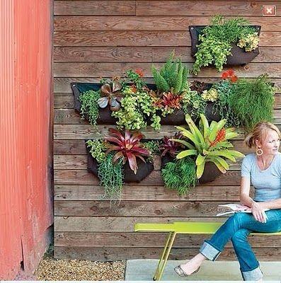 Muros Verde Jardin Vertical Huerto Colgante Hortalizas 40000 En - Muros-jardin