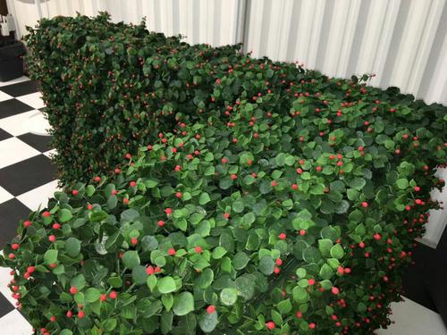 muros verdes  mamparas divisorias restaurante