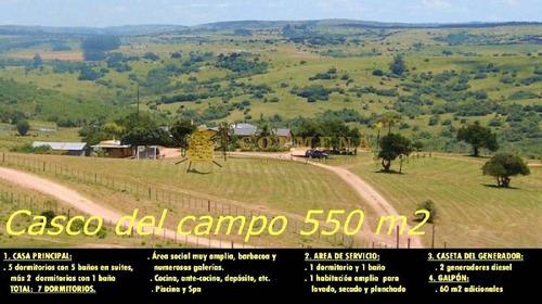muy buen campo ganadero y forestal - ref: 502