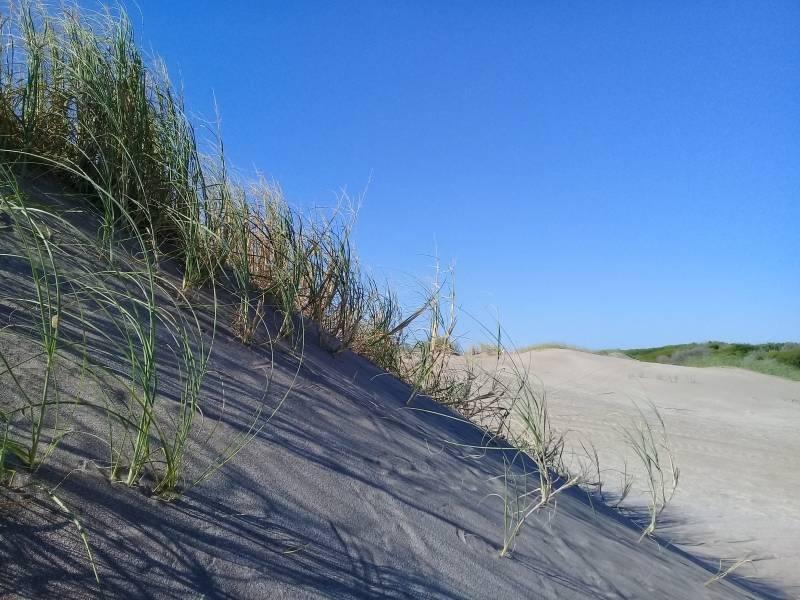 muy buen lote en venta zona senderos en costa esmeralda, plano y arbolado al fondo!