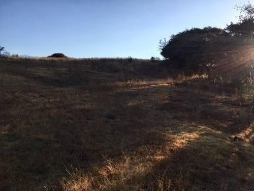 muy buen terreno ubicado en el área de rancho blanco