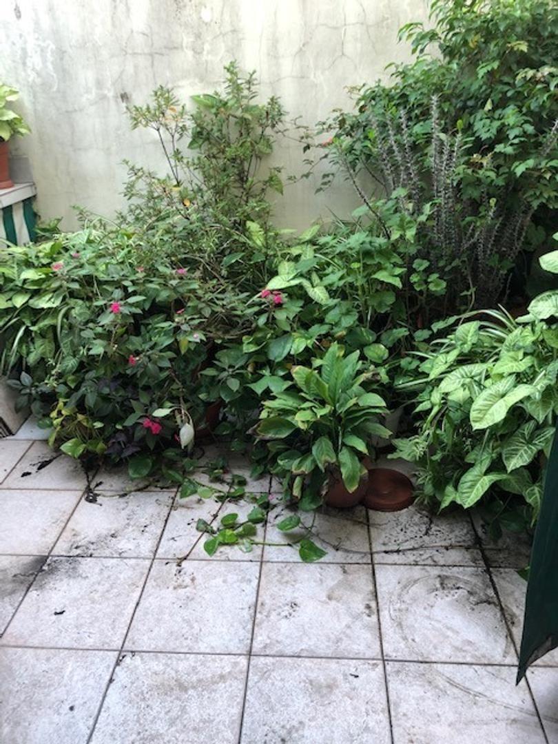 muy lindo dpto 2 amb con patio - boedo 1368 - l. de zamora