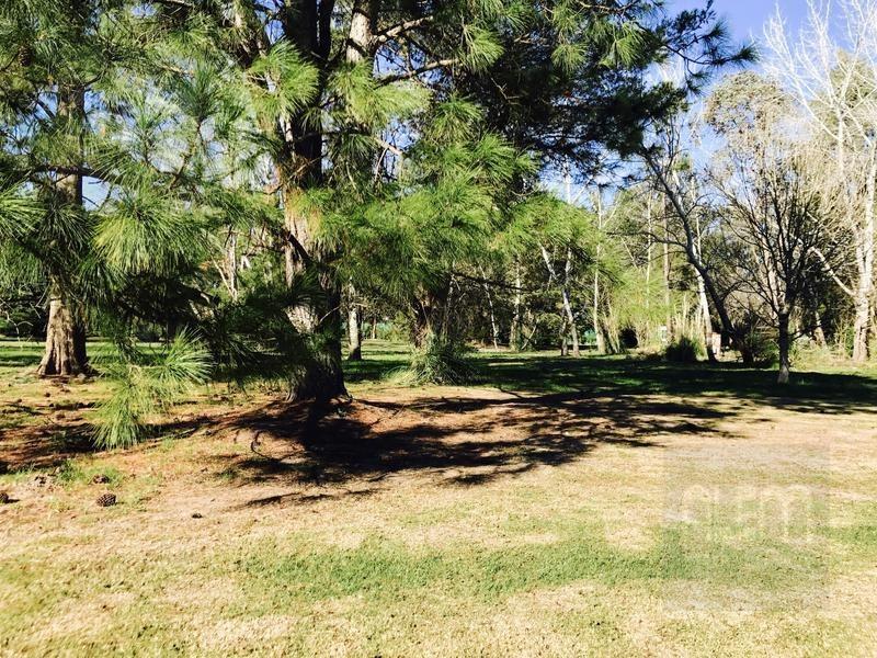 muy lindo terreno en saint thomas oeste - canning