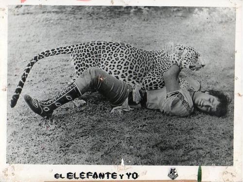 my friend monkey bandar mera sathi mi amigo elefante y yo