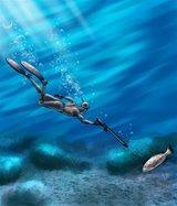 nadadeira aberta fluence seasub