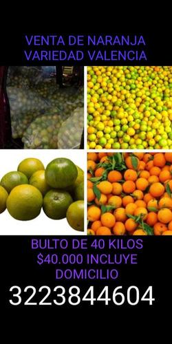 naranja de la variedad valencia