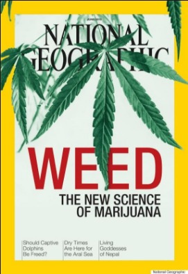 national geographic - weed, the new science of marijuana