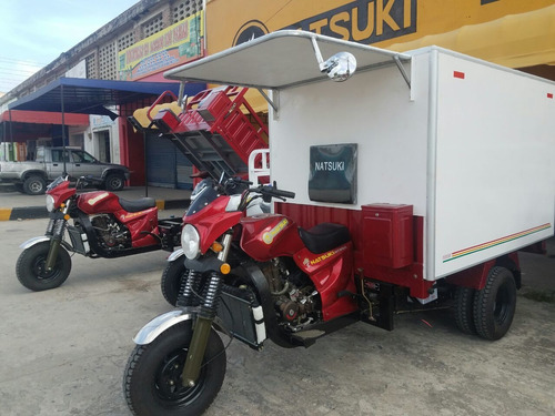 natsuki motocarro furgon en fibra