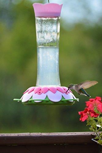 nature's way bird products gfhf1 comedero para colibríes de