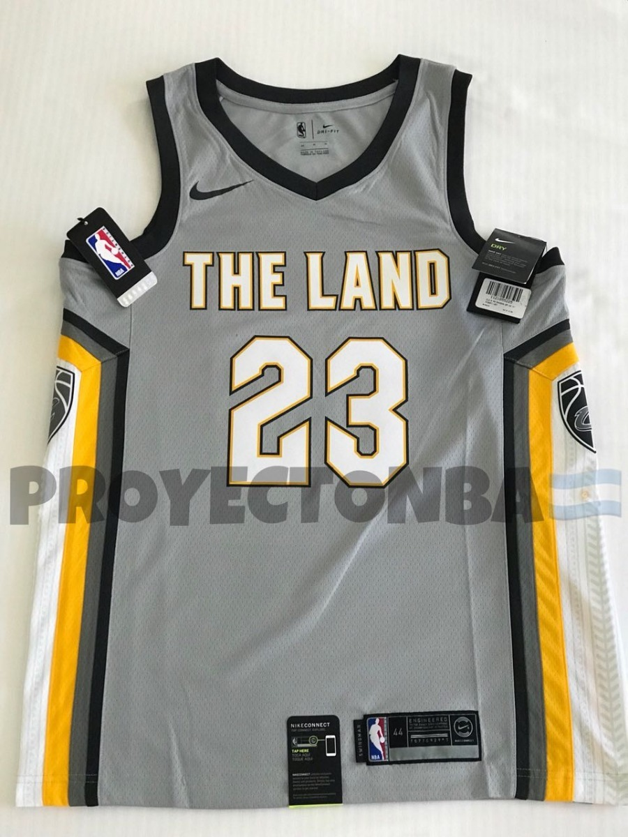 timeless design 5bab7 70cb0 Nba | Lebron James City Edition Swingman Jersey (cavs)