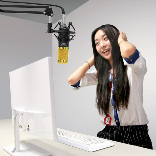 neewer nw-8000 mic+nw35 soporte de micrófono + cables +brazo