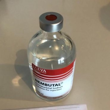 nembutal (pentobarbital de sodio) y diferentes barbitúricos.