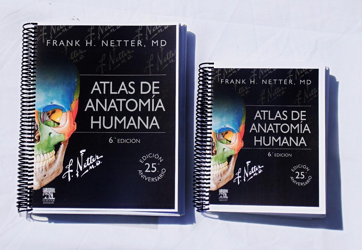 Netter - Atlas De Anatomía Humana (6ta Edición) Tamaño Carta ...