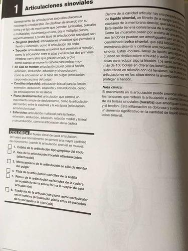 netter. cuaderno de anatomía para colorear 2rev / con envío