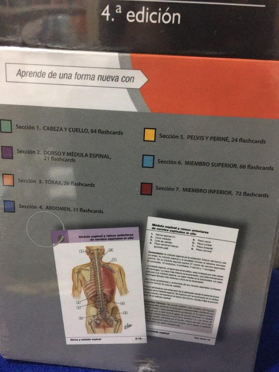 Increíble Anatomía Tarjetas Flash En Línea Gratis Adorno - Imágenes ...