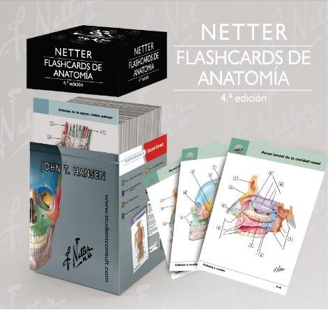 Netter Flashcards De Anatomia Studentconsult 4 Edicion 1 598