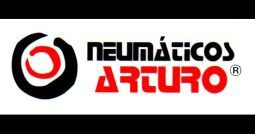 neumatico r14 firestone