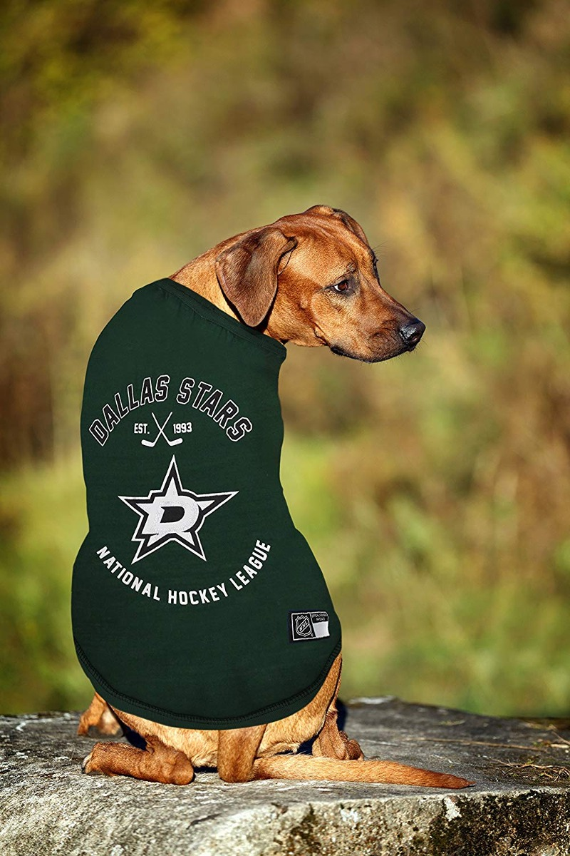 de14ff011 Nhl Dallas Stars Tee Shirt For Dogs   Cats