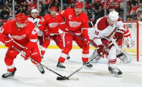nhl hockey jersey profesional de los coyotes  reebok nvd