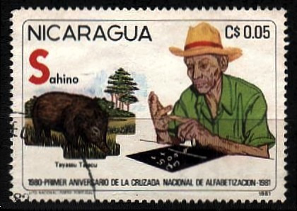 nicaragua 1981 * agrosivil * cruzada nacional alfabetização