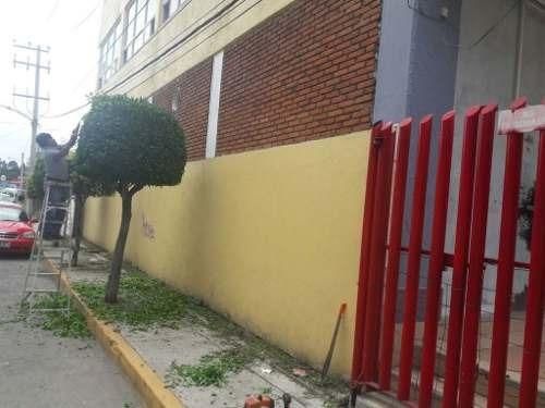 nicolás romero: local nuevo en pb en plaza comercial