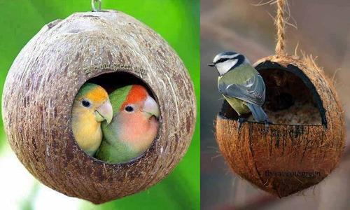 nidos para pajaros