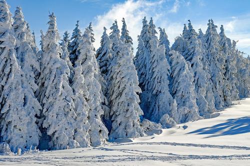 nieve artificial instantanea, 500 grs, decora todo el año
