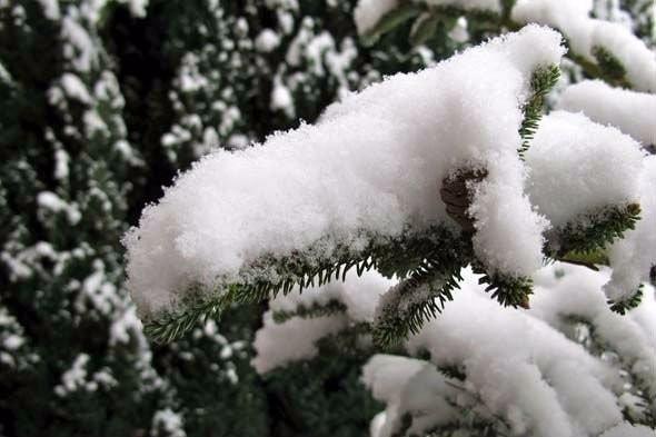 nieve artificial p arbol navidad vidriera piso adorno juego