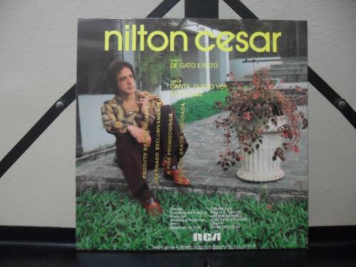 nilton cesar de gato e rato compacto promo 1983