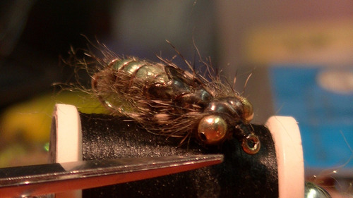 ninfas kit de 12 moscas