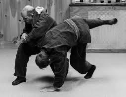 ninpo taijutsu sistema de tecnicas de lucha sin armas(correo